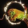 Цирки в Пятигорске